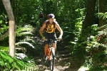 Robbehoek Tours & Trails