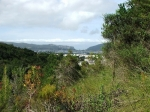 Pledge Nature Reserve – Knysna